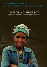 Cover Developing Disparity by TNI & BCN