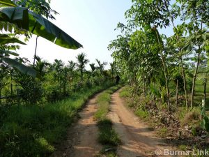road-to-proposed-project-site-in-ann-din